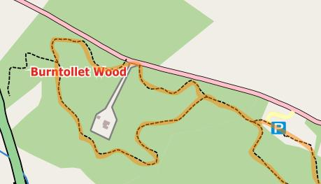 Burntollet Wood Extract
